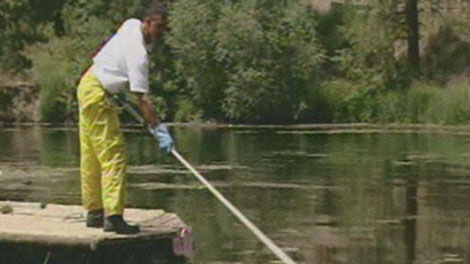 Idaho fish and game director will push license fee increase for Idaho fishing license online