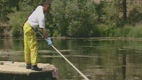 Idaho fish and game director will push license fee increase for Idaho fishing license