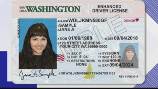 idaho state drivers license verification